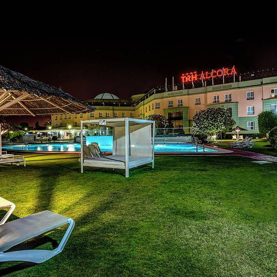 SWIMMING POOL AND GARDENS Alcora Business & Congress Hotel -